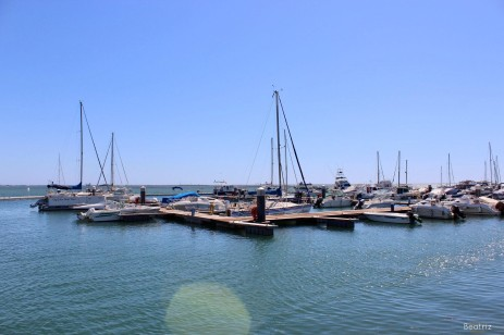 olhao (7)