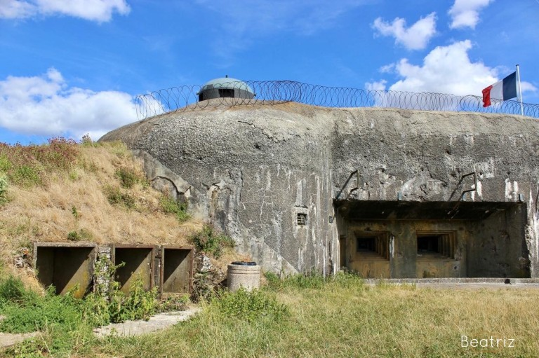 Fort (13)